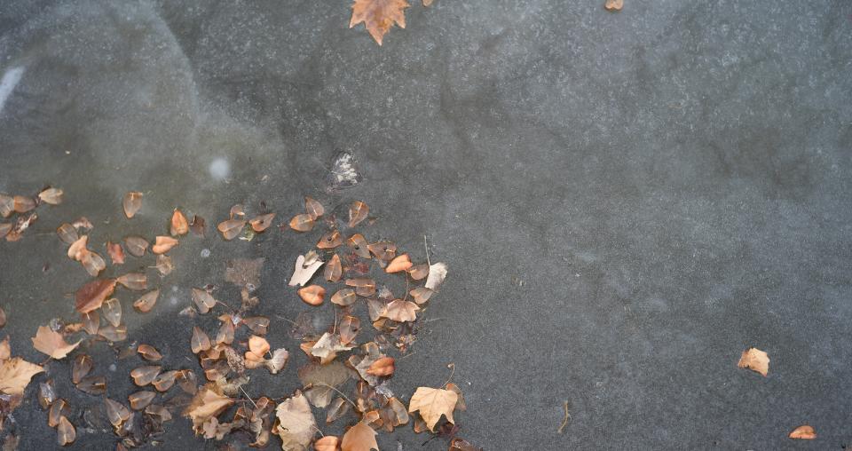 Hoe je polyester vijver winterklaar maken?